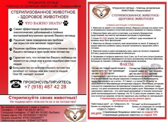 Преданное сердце Новороссийск
